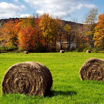 Fall Hay Bales by rollosphotos