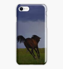 """""""Storm colt"""" for iphone iPhone Case/Skin"""