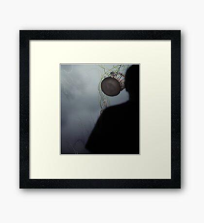 Jelly Head Framed Print