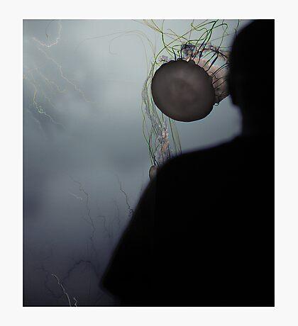 Jelly Head Photographic Print