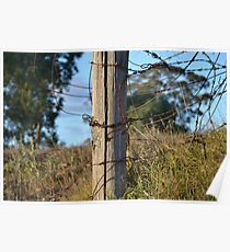 Old Wooden Fence Poster