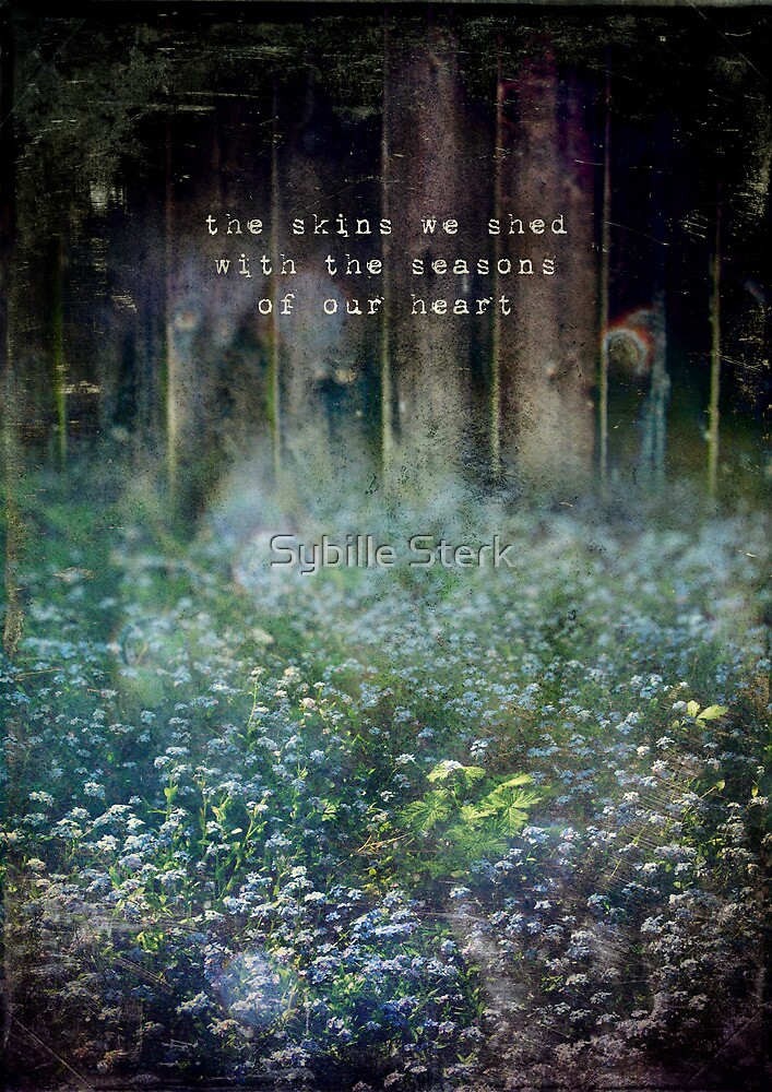 The Skins We Shed by Sybille Sterk