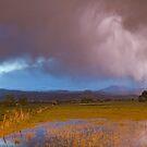 Lightning Striking Longs Peak Foothills 7 by Bo Insogna