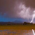 Lightning Striking Longs Peak Foothills 8 by Bo Insogna