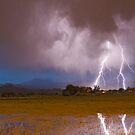 Lightning Striking Longs Peak Foothills 8C by Bo Insogna