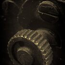 Lens Reversal of old camera part sepia toned 1 by Jason Franklin