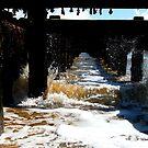 Making A Splash! by DCLehnsherr
