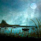 Lindisfarne Moon  by Brian Tarr