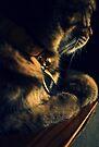 Thinking Of You.... by jodi payne