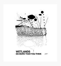 Wetlands (originally created for Bladensburg State Park, 2015) Photographic Print