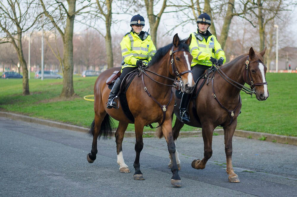 Mounted Law Enforcement by david261272