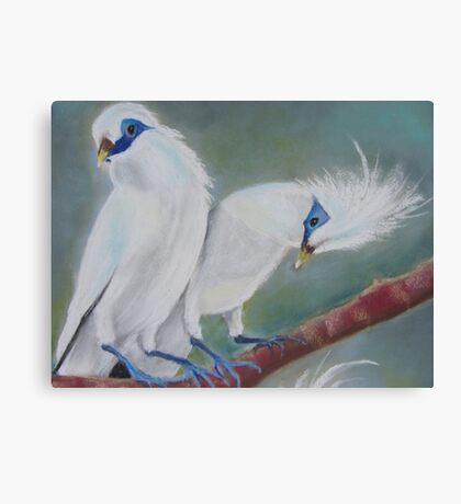 Mynah Sweethearts Canvas Print