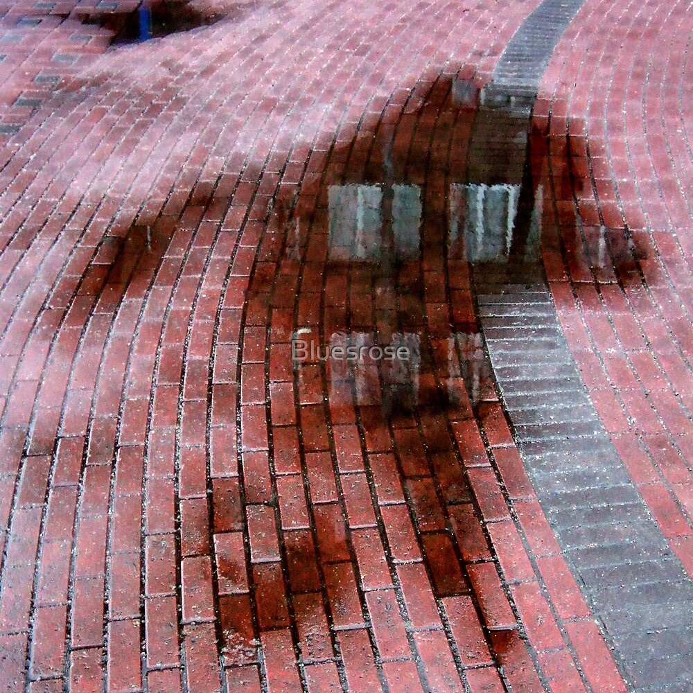wet ghost by Bluesrose