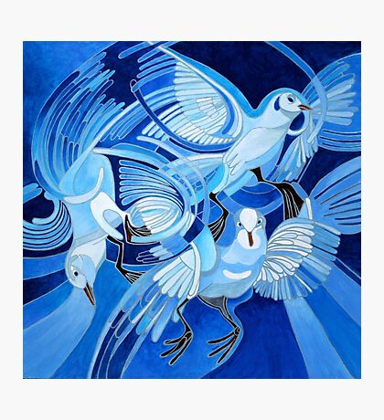 Muge's Pigeons in Blue Photographic Print