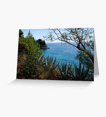 Hvar Beach  Greeting Card