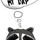Cool Raccoon by thesamba