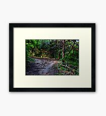 Decisions - Daily Homework - Day 14 - May 21, 2012 Framed Print