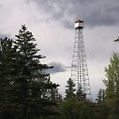 """  Fire Lookout Tower  "" by fortner"