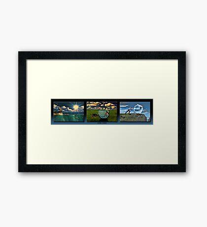 The Mermaid Trilogy Framed Print