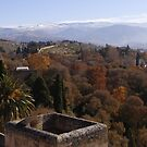Alhambra by dipperdoo