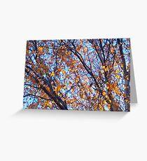 Honeydew Autumn Greeting Card