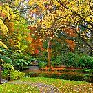 Alfred Nicholas Gardens, Melbourne. by johnrf