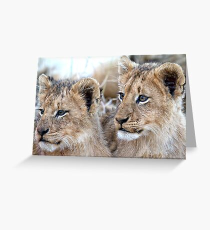 Brothers Forever Greeting Card
