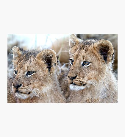 Brothers Forever Photographic Print