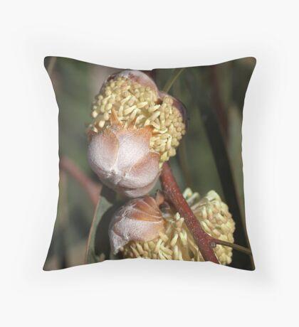 Hakea  Throw Pillow