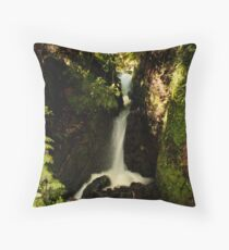 kaituna slipstream Throw Pillow