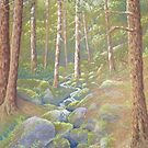 Woodland Stream, Peak District, Derbyshire by Fiona Cross