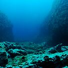 Rocks on ocean floor by Sami Sarkis