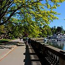 Vancouver - Stanley Park - Approaching the Bay by rsangsterkelly