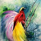 Bird of Paradise New Guinea by IsabelSalvador