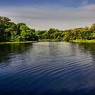 On the Edge - Lake Pickens, Sherman, Texas, USA by aprilann