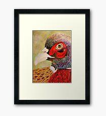 A Pheasant Portrait Framed Print