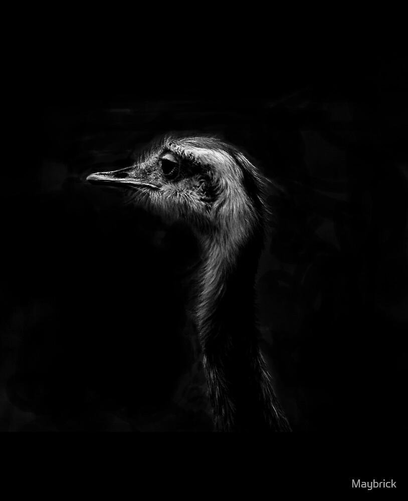 Mono Ostrich by Maybrick