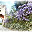 Fossanova abbey: flower creeper and tower by Giuseppe Cocco