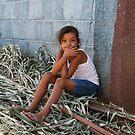 Building dreams in Ortega by scmooney