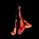 Upside down circus part 2 by scmooney