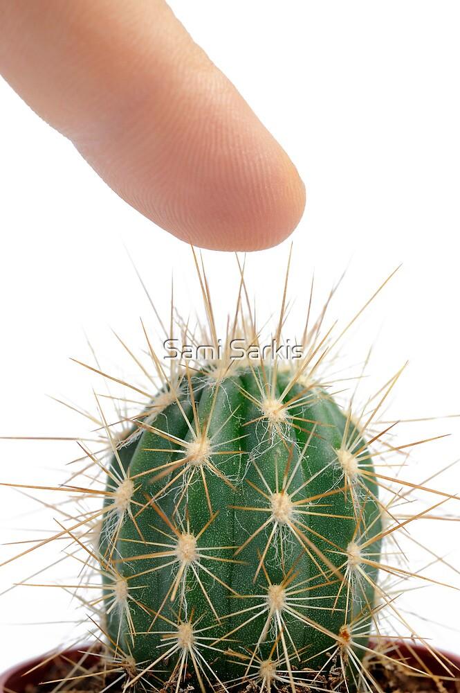 Pressing finger on cactus by Sami Sarkis
