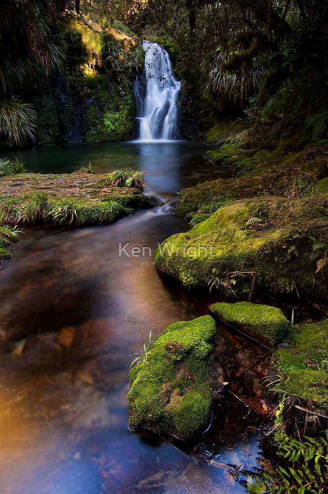 Whataroa emerald moss by Ken Wright