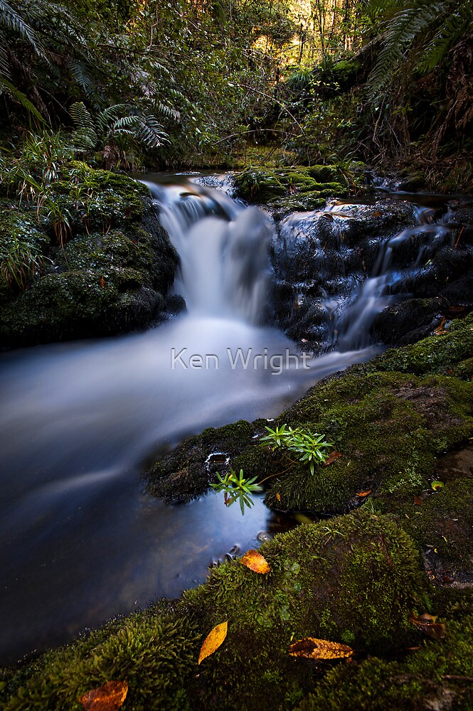 Whataroa Stream by Ken Wright
