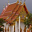 Against a thunderous sky - Chalong - Phuket by Karen Stackpole