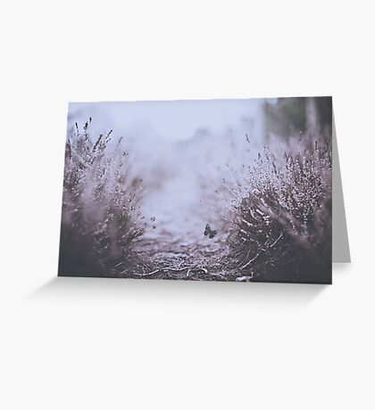 Amoungst the Heather Greeting Card