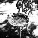 garden chair by agawasa