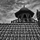 The Watchtower B/W by anorth7