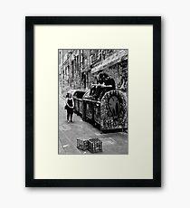 Just hanging out - Melbourne Victoria Framed Print