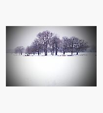 Brockwell Park Tree Circle in Winter Photographic Print