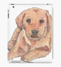 Colour pencil puppy iPad Case/Skin